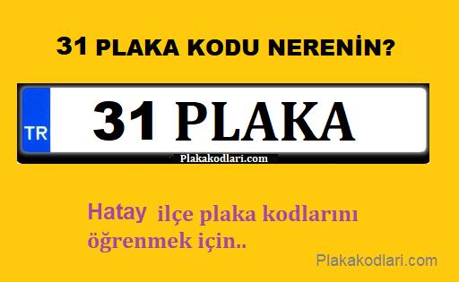 31 Plaka, Hata Plaka Kodu