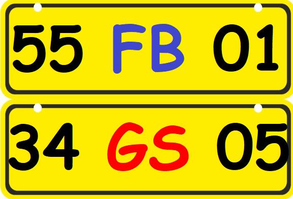 Sarı Plaka